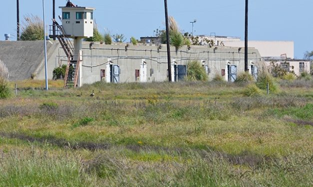 Alameda Point Park Moves Closer to Reality