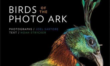 Brower Center Hosts Joel Satore's 'Photo Ark'